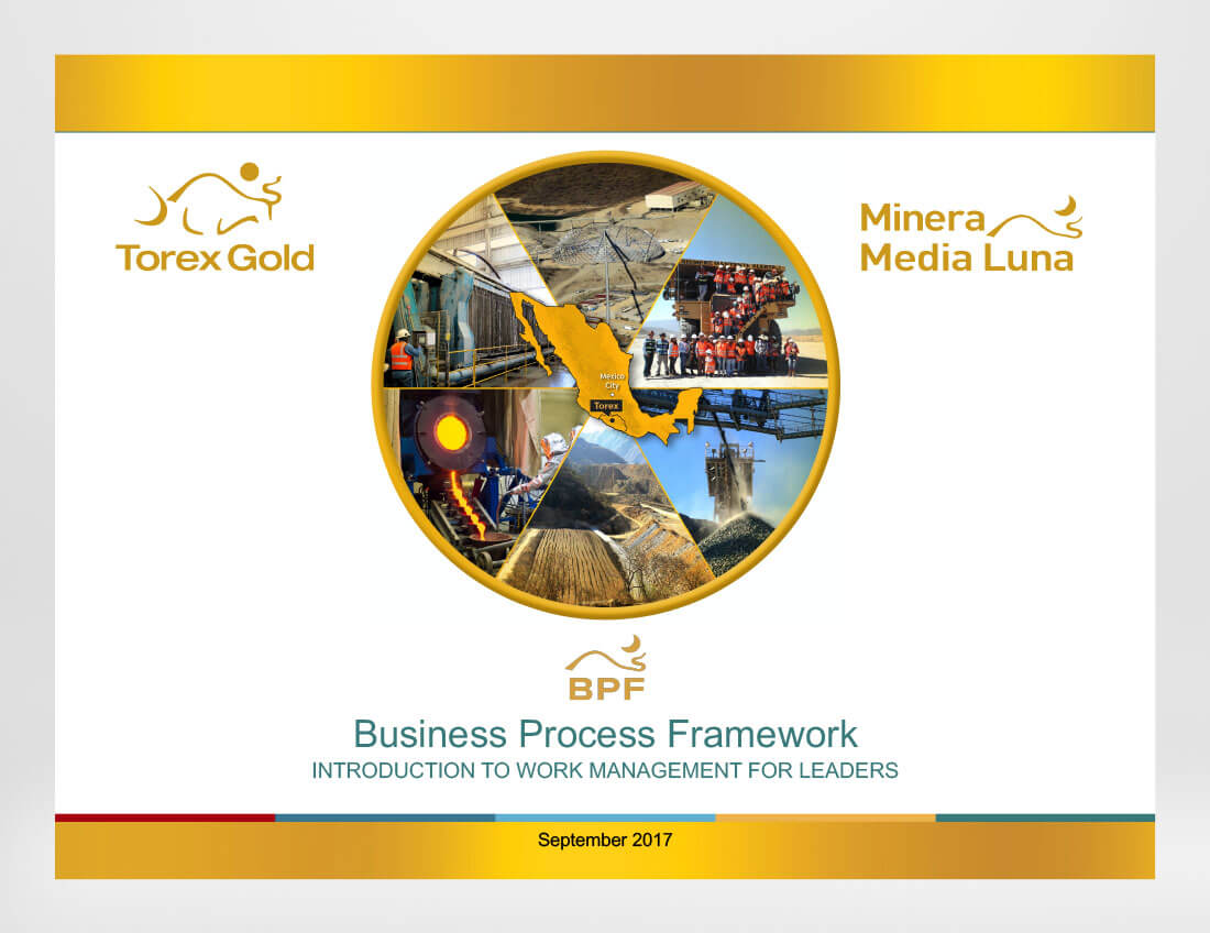 Torex Business Framework Presentation